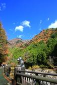 日本四國人文藝術+楓紅深度之旅-別府峽楓葉散策53-23:A81Q0060.JPG