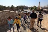 19-6敘利亞Syria-阿雷波ALEPPO_阿雷波古城堡(The Citadel):IMG_6026敘利亞Syria-阿雷波ALEPPO_阿雷波古城堡(The Citadel).jpg
