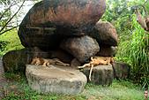 15-5-峇里島-Safari Marine Park野生動物園:IMG_1148峇里島-Safari Marine Park野生動物園.jpg