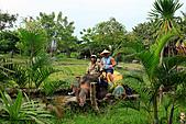 15-5-峇里島-Safari Marine Park野生動物園:IMG_1189峇里島-Safari Marine Park野生動物園.jpg
