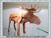 南極行_各地轉機出入境景緻:DSC02889日本轉機-日本折紙博物館.JPG