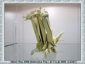 南極行_各地轉機出入境景緻:DSC02890日本轉機-日本折紙博物館.JPG