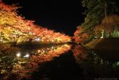 日本北關東東北行-8弘前城-櫻花紅葉園區驚豔楓紅.....:A81Q0698.JPG