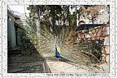 玻得俊城堡Bodrum Castle-玻得俊Bodrum:_MG_3735 Bodrum Castle 玻得俊城堡_20090505.jpg