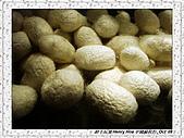 8.中國蘇州_其他掠影:DSC01913蘇州_參觀蠶絲被工場.jpg