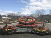 日本關西賞櫻深度之旅-鳥取花迴廊42-8:IMG_2299.JPG