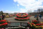 日本關西賞櫻深度之旅-鳥取花迴廊42-8:A81Q1621.JPG