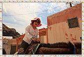 15-希臘Greece聖特里尼SANTORINI費拉碼頭騎驢爬懸崖:IMG_7322.jpg