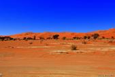 納米比亞紅色沙漠-1200公尺世界最高的-就在死亡谷上方:IMG_6989.jpg