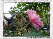 5.中國無錫_其他掠影:DSC01831無錫_華美達廣場酒店.jpg