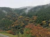 日本四國人文藝術+楓紅深度之旅-別府峽楓葉散策53-23:IMG_5410.JPG