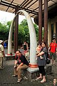 15-5-峇里島-Safari Marine Park野生動物園:IMG_1298峇里島-Safari Marine Park野生動物園.jpg