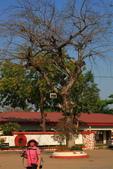 南部非洲32天探索之旅-馬拉威MALAW 6-5-5里旺國家公園狩獵巡禮:IMG_2446里旺國家公園狩獵巡禮之行.JPG