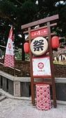 2019.0302九族文化村賞櫻:DSC_5387.JPG