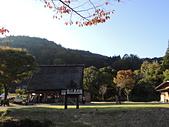 日本賞楓白川鄉合掌村2013.11.01:DSCN6713.JPG