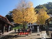 日本北陸立山黑部2013.11.02:DSCN6779.JPG