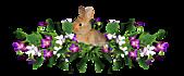 2011兔年大吉图片欣赏:1d04e2fq119e3c.4f061c.jpg