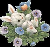 2011兔年大吉图片欣赏:1701f20q1cdc0.gif