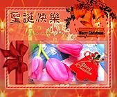 (耶誕)動畫大卡圖:7801445_5.jpg