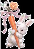 2011兔年大吉图片欣赏:1a01319q119efc.c816a0.jpg