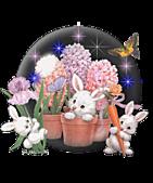2011兔年大吉图片欣赏:1b0354aq115ab3.54db49.jpg