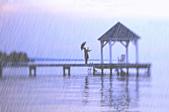 雨景-動畫大卡圖:146202935_l.jpg.gif