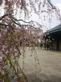 2012日本中部自助行DAY6-名古屋→台灣:1613056585.jpg