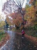 2013日本東北紅葉鐵腿行_手機上傳:1383606153017.jpg