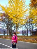 2013日本東北紅葉鐵腿行Day3田澤湖→乳頭溫泉鄉:P1130229.JPG