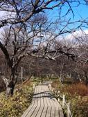 2013東京生日之旅DAY2 日光→宇都宮:P1160995.JPG