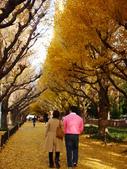 2013東京生日之旅DAY3 外苑→明治神宮→代官山→自由之丘:P1170385.JPG