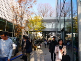2013東京生日之旅DAY3 外苑→明治神宮→代官山→自由之丘:P1170606.JPG