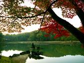 2013日本東北紅葉鐵腿行Day7鳴子峽→平泉中尊寺、毛越寺:P1160005.jpg