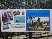 2014日本四國浪漫之旅day2高松→小豆島:P1170991.JPG