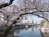 **春賞櫻8日行***Day8 大阪城→台灣:1230550012.jpg
