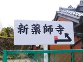 **春賞櫻8日行***Day5 奈良→春日大社→新藥師寺→東大寺→冰室神社:1621372183.jpg