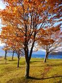 2013日本東北紅葉鐵腿行Day2 奧入瀨溪→十和田湖:P1130021.JPG