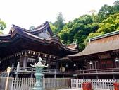 2014初夏日本四國浪漫之旅day3金刀比羅宮→高知:P1180251.JPG