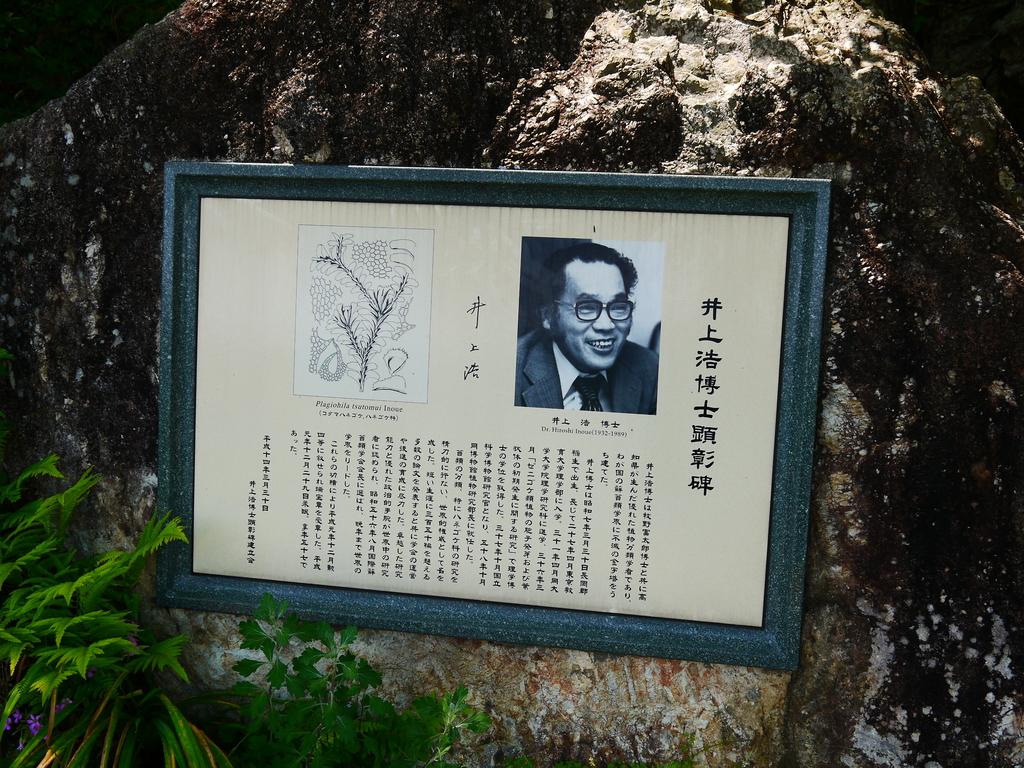2014初夏四國浪漫之旅day4 高知城→桂濱:P1180555.JPG