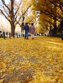 2013東京生日之旅DAY3 外苑→明治神宮→代官山→自由之丘:P1170400.JPG