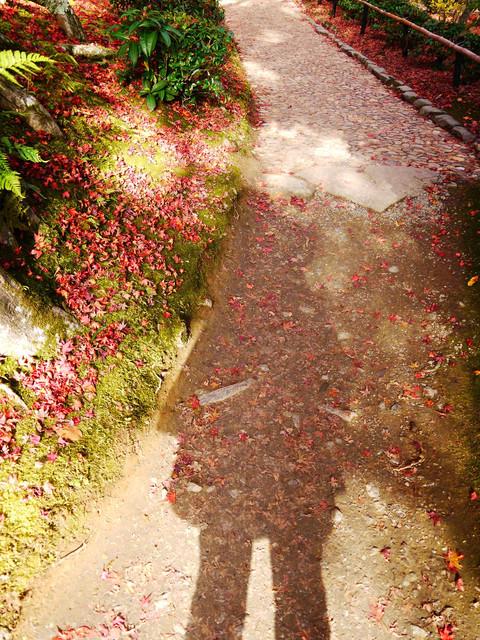 一個人的生日旅行~2011京阪行DAY3:1346264851.jpg