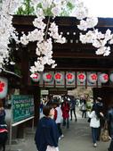 2013春賞櫻8日行***DAY3 醍醐寺→金閣寺→平野神社:1541713169.jpg