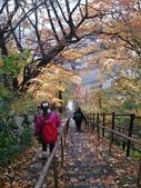 2013日本東北紅葉鐵腿行_手機上傳:1383606167275.jpg