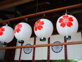 2013春賞櫻8日行***DAY3 醍醐寺→金閣寺→平野神社:1541713170.jpg