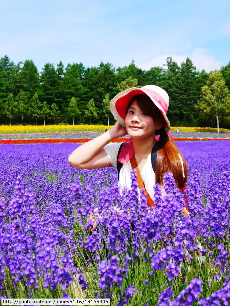 2014夏‧北海道家族之旅DAY3彩香之里、日出公園、美瑛:P1200306.JPG
