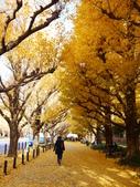 2013東京生日之旅DAY3 外苑→明治神宮→代官山→自由之丘:P1170398.JPG