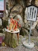 2014初夏四國浪漫之旅day4 高知城→桂濱:P1180417.JPG