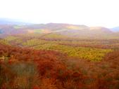 2013日本東北紅葉鐵腿行Day2 奧入瀨溪→十和田湖:P1120622.JPG