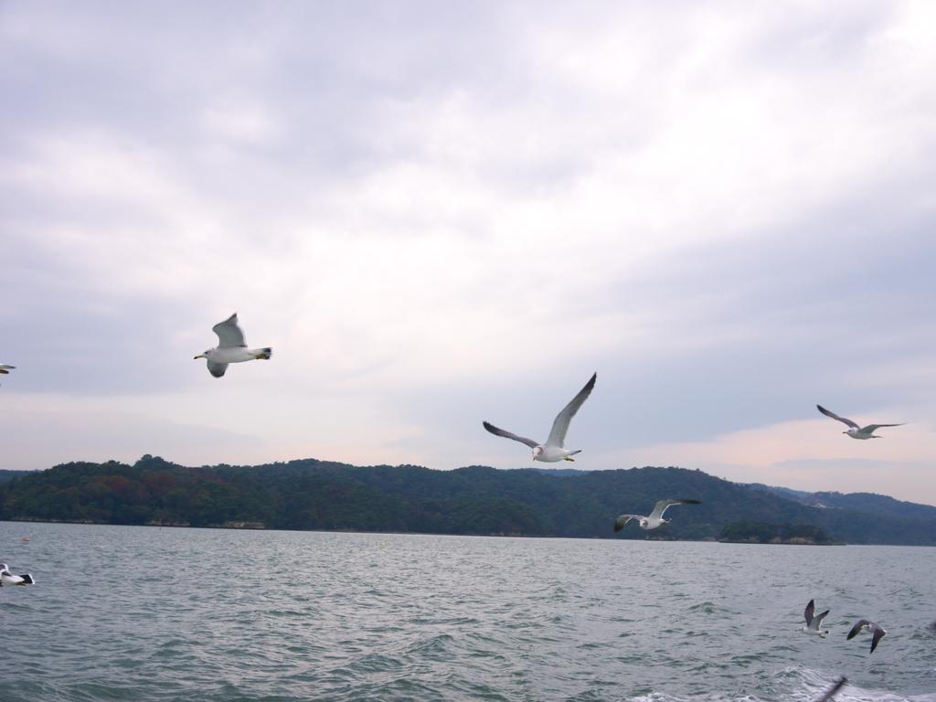 2013日本東北紅葉鐵腿行Day8松島→台灣:P1160195.jpg