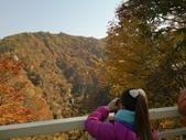 2013日本東北紅葉鐵腿行_手機上傳:1383710850969.jpg